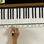 The Musical Keyboard